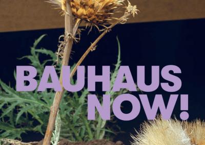 Bauhaus Now! – Exhibition Catalogue